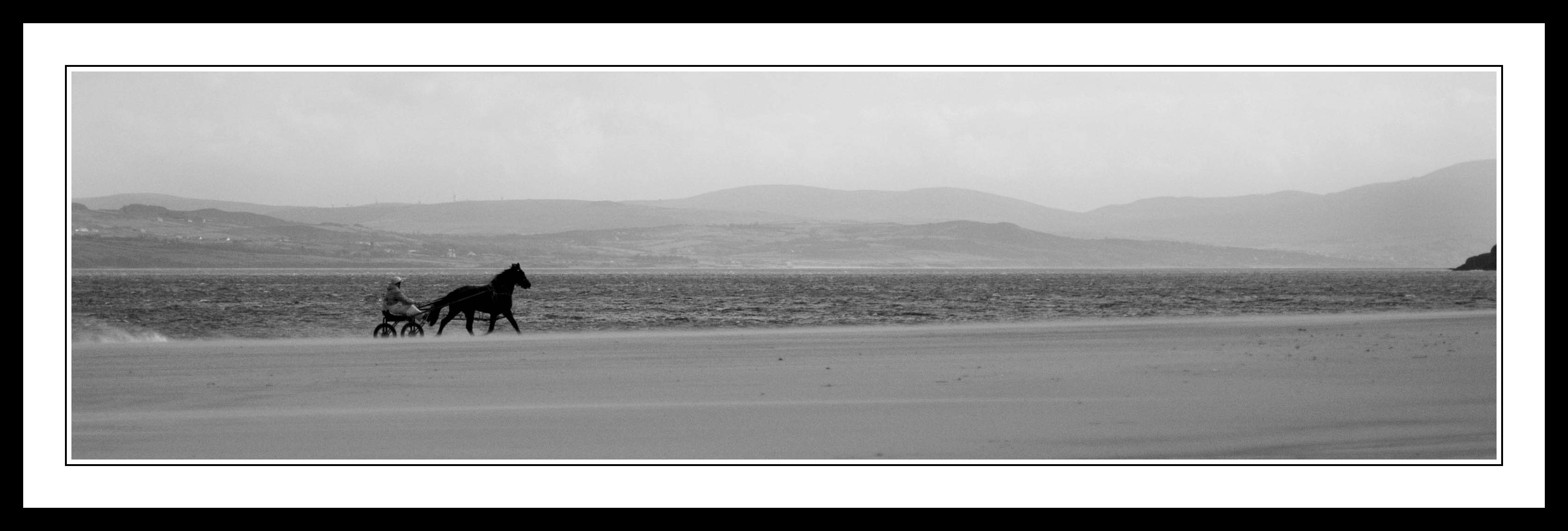 Running Horse on Beach in Donegal