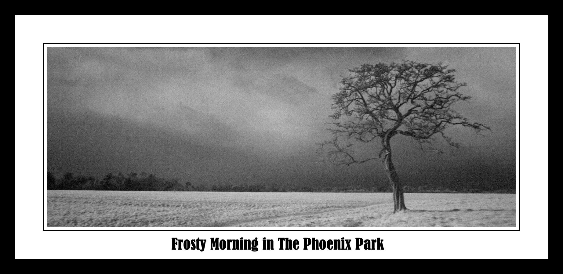 frost morning phoenix park slideshow