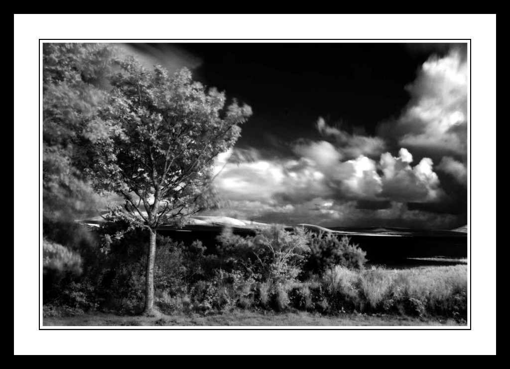 Lake-Carrowmore-Infra-Red